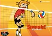Volleybal Smashbal2