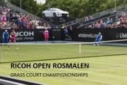 Tennis Rosmalen Open 2016